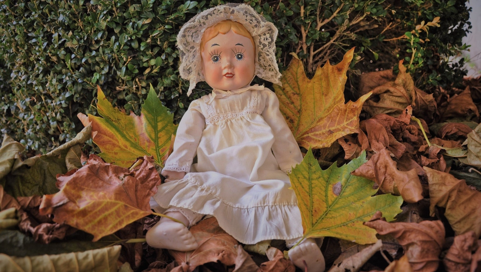 Poem A porcelain doll dressed in a white frock wearing a lacy bonnet sitting on a pile of dried leaves against a green bush