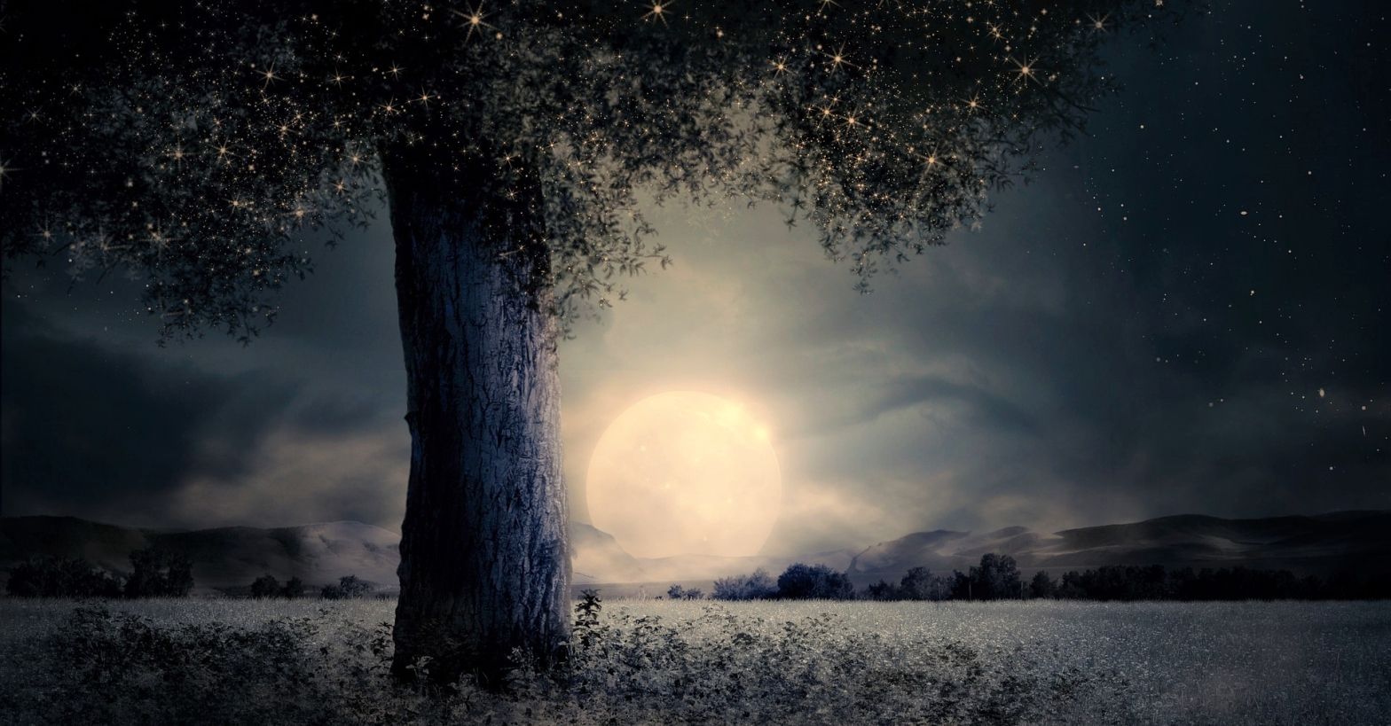 Poetry Poem The moon bright white full and large sinking so low close to the horizon, wispy cloudy night, a large tree close to you with twinkling sparkles amongst the leaves