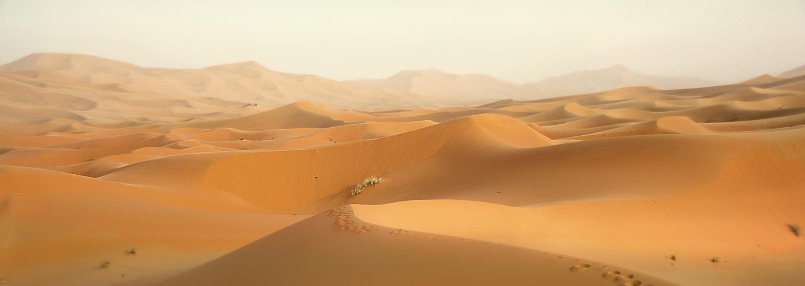 Poetry Desert sand dunes far to the horizon