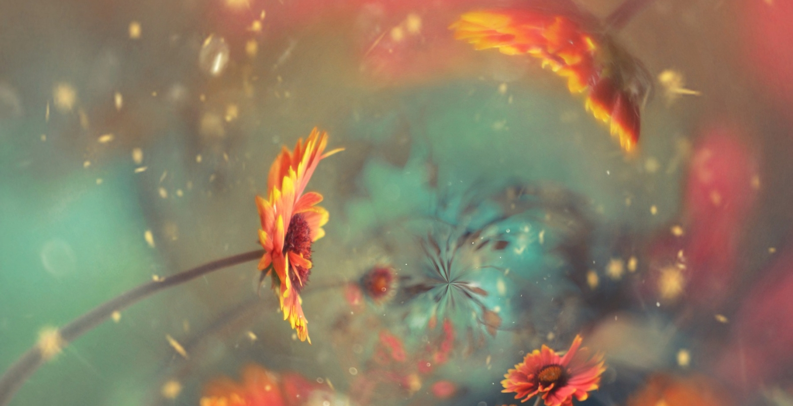 Poetry abstract are with colors nebulizing from the center with sunflowers facing that center