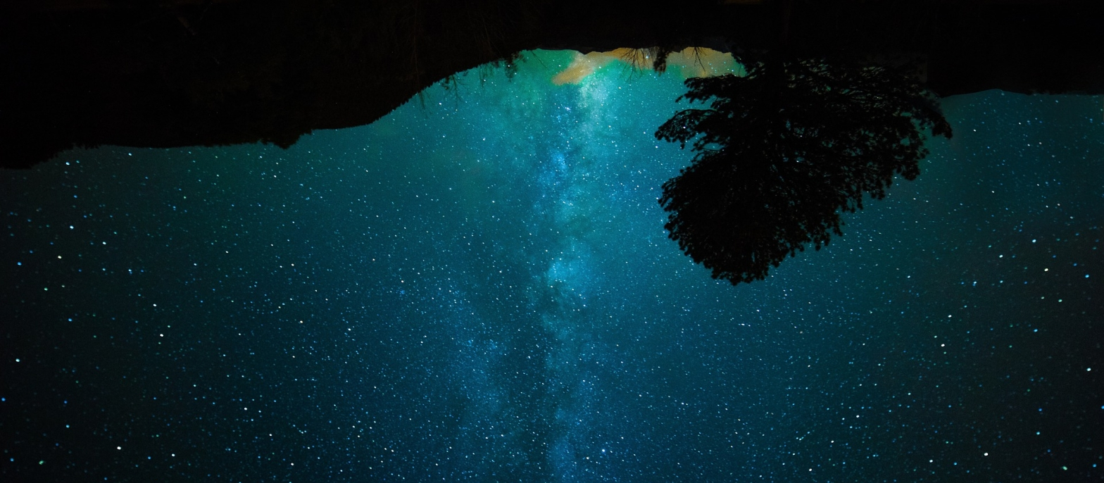 Poetry The grounds, trees are above upside down, and the starry milky way at the bottom